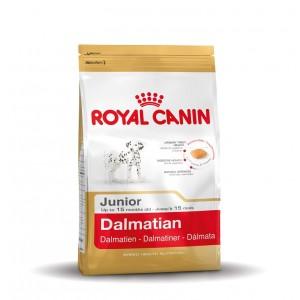 Royal Canin Cane Dalmata Junior 25