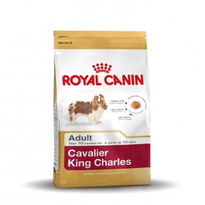 Royal Canin Cane Cavalier King Charles Adulto