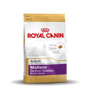 Royal Canin Cane Maltese Adulto