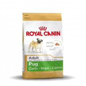 Royal Canin Cane Carlino Adulto