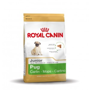 Royal Canin Cane Carlino Junior