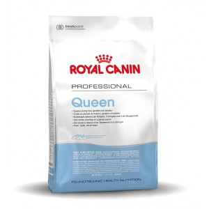 Royal Canin Queen per gatto