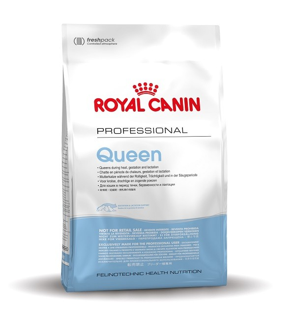 Royal Canin Gatto Queen 34