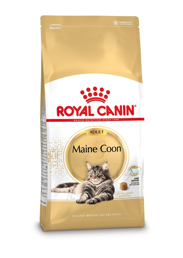 Royal Canin Gatto Maine Coon 31 Adult