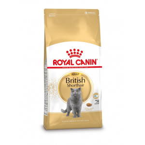Royal Canin Gatto British Shorthair 34