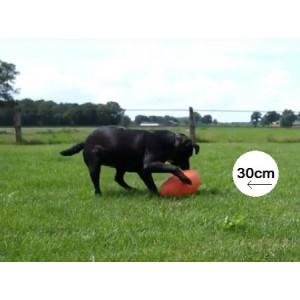 Gioco per cani Pan-Stars - 30cm