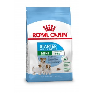 Royal Canin Mini Starter Mother and Babydog per cane