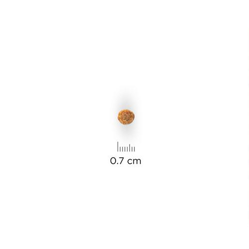 Hill's Senior 11+  Small & Miniature Cane, con pollo