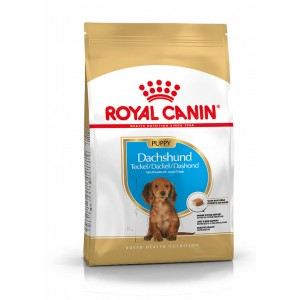 Royal Canin Cane Bassotto Junior