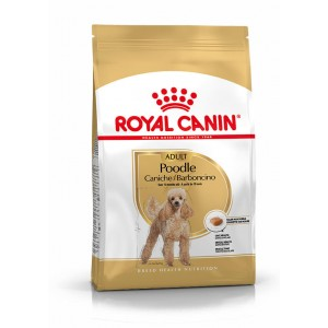 Royal Canin Cane Barboncino Adulto