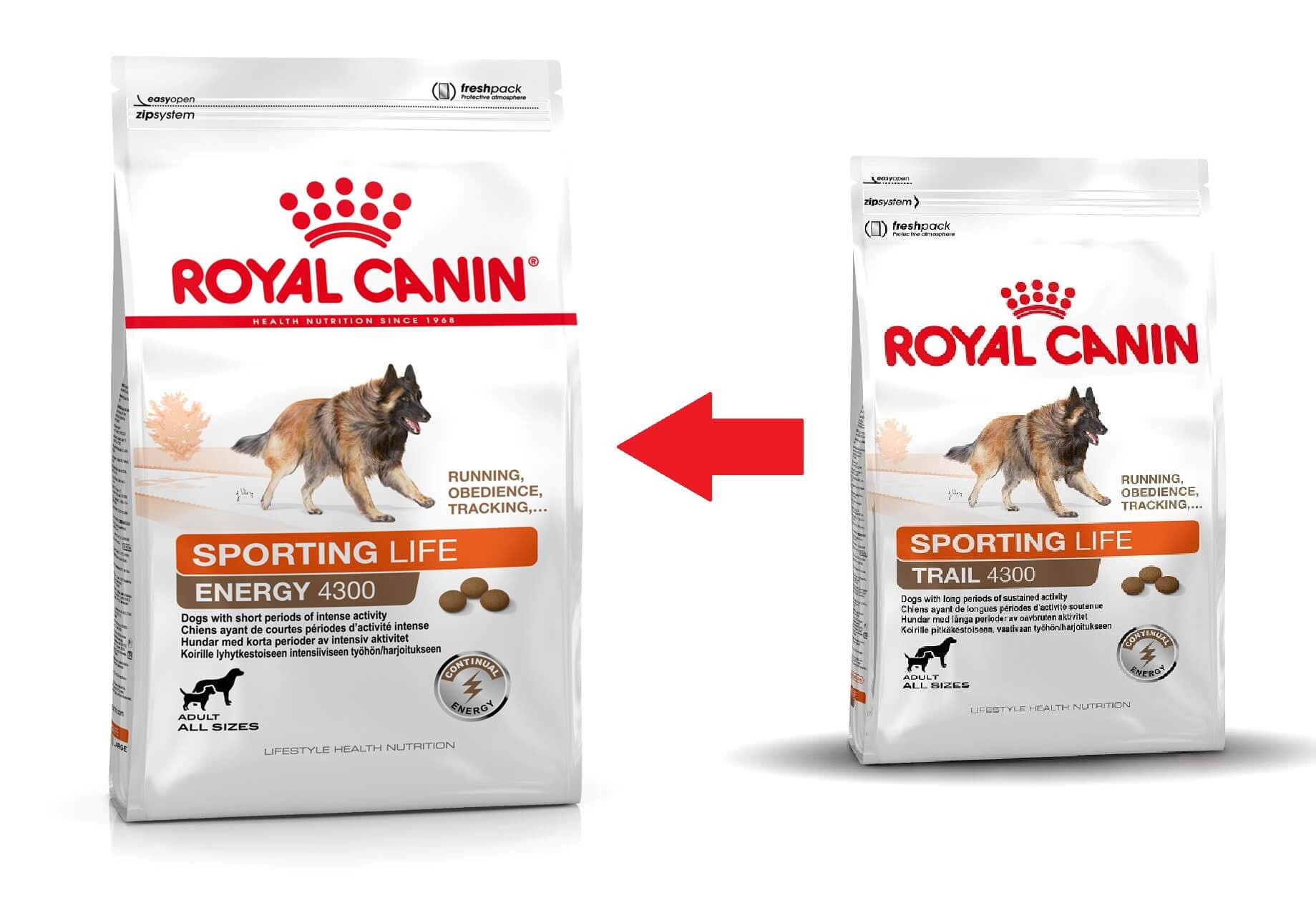 Royal Canin Sporting Life Trail 4300 Cane