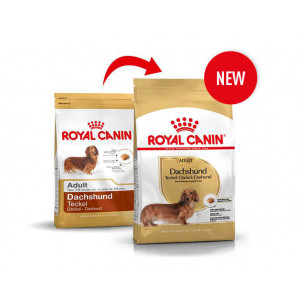 Royal Canin Cane Bassotto Adulto