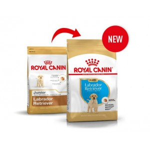 Royal Canin Cane Labrador Retriever Junior