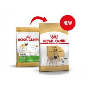 Royal Canin Cane Carlino Adulto