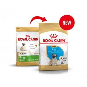 Royal Canin Cane Carlino Puppy