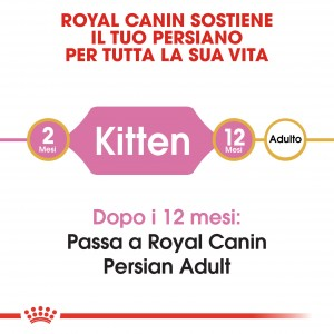 Royal Canin Gattino Persiano 32