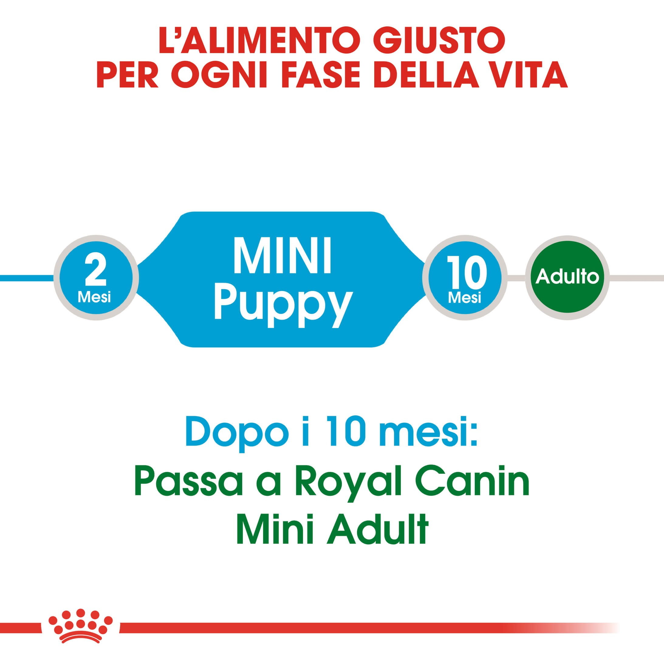 Royal Canin Mini Puppy per cane