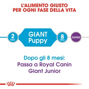 Royal Canin Giant Puppy per cane