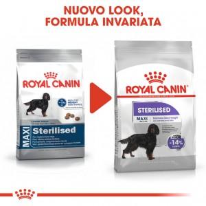 Royal Canin Maxi Sterilised  per cane