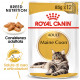 Royal Canin Maine Coon Adult cibo umido per gatto