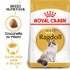 Royal Canin Gatto Ragdoll