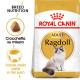Royal Canin Gatto Ragdoll
