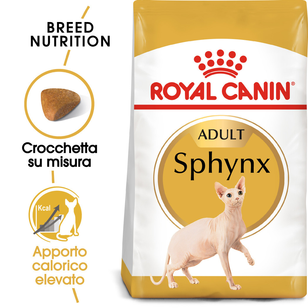 Royal Canin Gatto Sphynx 33