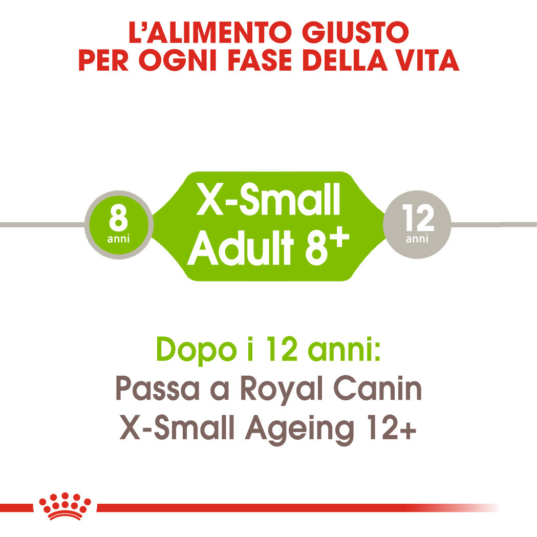 Royal Canin Cane X-Small Mature +8