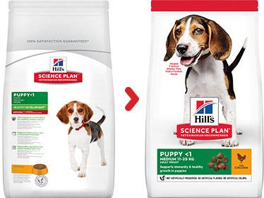 Hill's Puppy (Cucciolo) Cane Medium, pollo