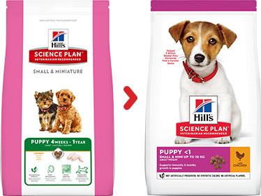 Hill's Puppy Small & Mini con pollo per cane 1,5 kg