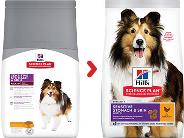 Hill's Adult Sensitive Stomach & Skin Medium con pollo per cane