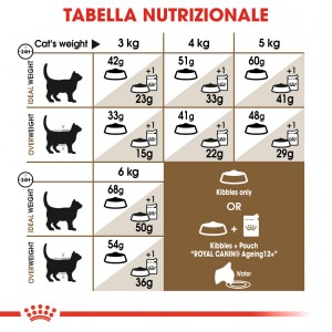 Royal Canin Ageing 12+ per gatto
