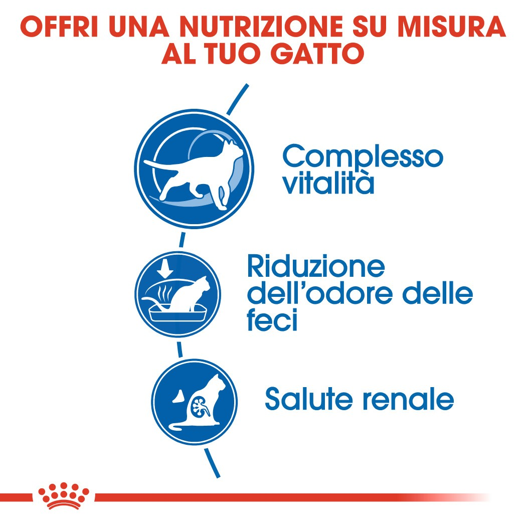 Royal Canin Indoor 7+ per gatto