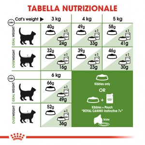 Royal Canin Outdoor 7+ Gatto