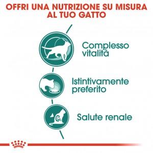 Royal Canin Instinctive 7+ cibo umido per gatto 12x