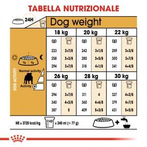 Royal Canin Adult Bulldog cibo per cane