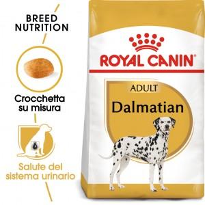 Royal Canin Cane Dalmata Adulto 22