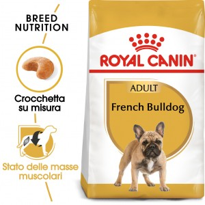Royal Canin Adult Bulldog Francese cibo per cane