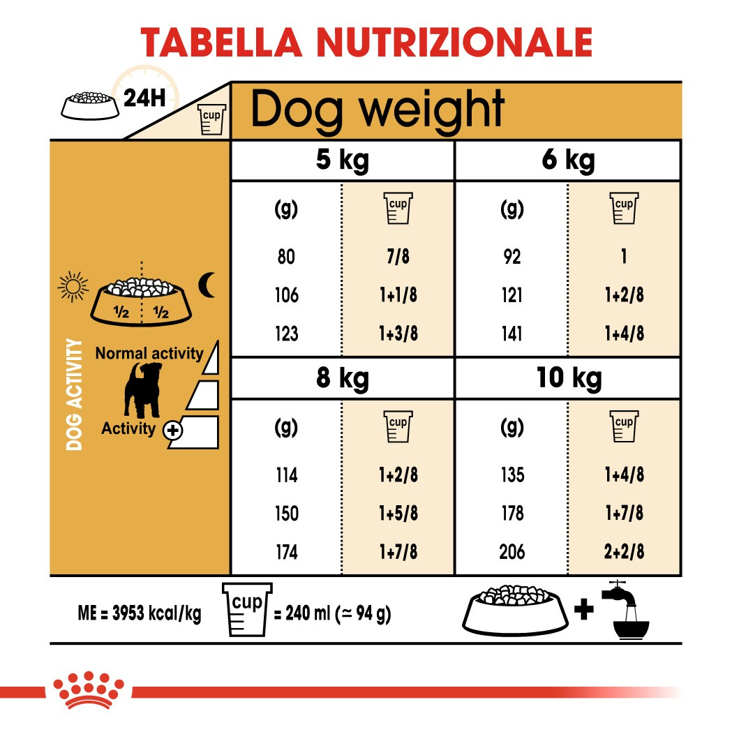 Royal Canin Adult Jack Russell Terrier cibo per cane