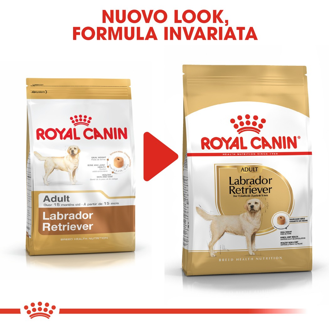 Royal Canin Cane Labrador Retriever Adult