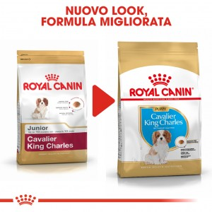 Royal Canin Puppy Cavalier King Charles cibo per cane