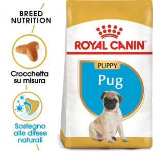 Royal Canin Cane Carlino Puppy