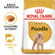 Royal Canin Adult Barboncino cibo per cane