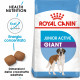Royal Canin Giant Junior Active Cane