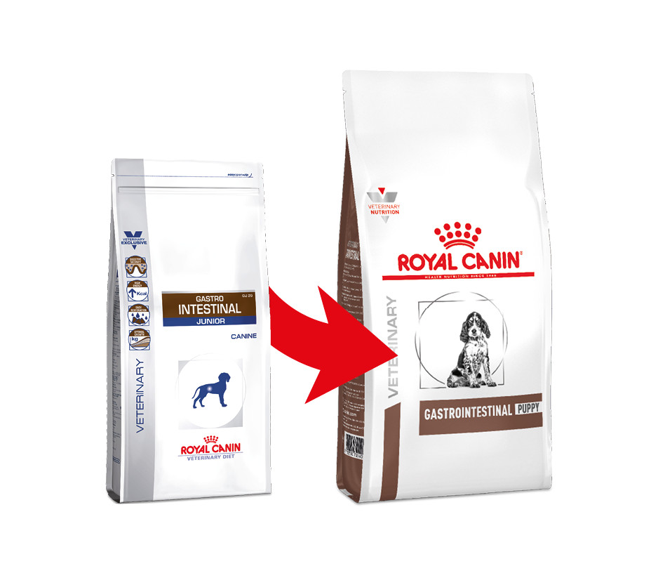 Royal Canin Veterinary Gastrointestinal Puppy per cane