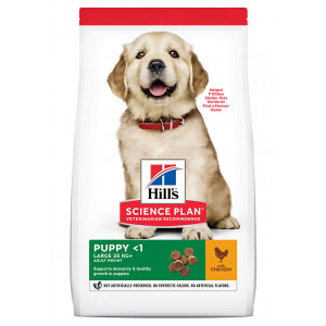 Hill's Puppy (Cucciolo) Cane Large, pollo