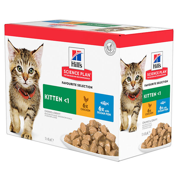 Hill's Kitten Favourite Selection pollo e pesce umido per gatto