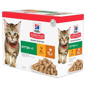 Hill's Kitten combi con pollo e tacchino cibo umido per gatto