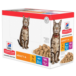 Hill's Adult Favourite Selection cibo umido per gatto