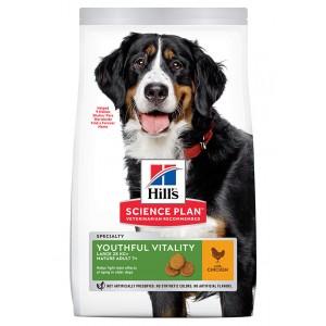 Hill's Mature Adult Senior Vitality Cane Large con pollo